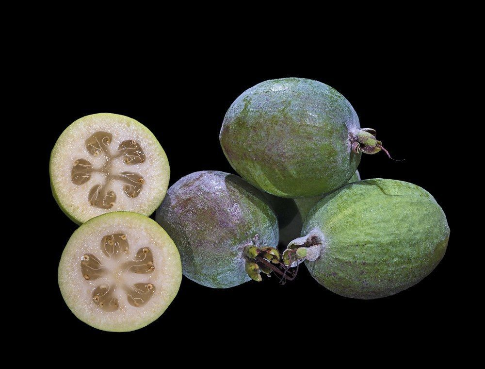 Feijoa Pineapple Guava Fruit