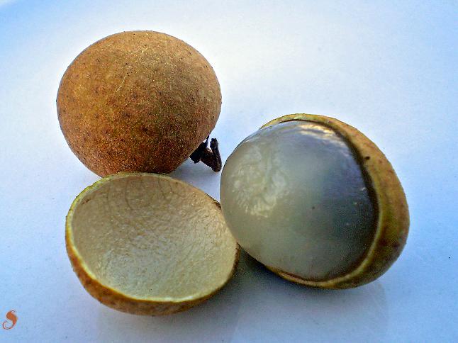 Longan fruit peeled